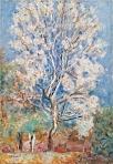 A Bonnard Blossom tree.